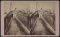 Passaic Falls, Paterson, N.J, from Robert N. Dennis collection of stereoscopic views 6.png