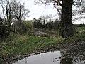 Path to Stockbatch Plantation - geograph.org.uk - 627427.jpg