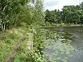 Paul's Pond, Breary Marsh Nature Reserve - geograph.org.uk - 1468061.jpg