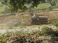 Pescara 2008 -New Holland Trattore- by-RaBoe 01.jpg