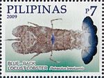 Petrarctus brevicomis 2009 stamp of the Philippines.jpg