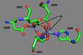 Pfprol active site.png