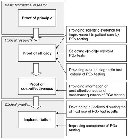Pharmacogenomics - Wikipedia