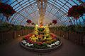 Phipps Conservatory winter 2015 Sunken Garden.jpg