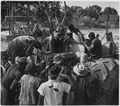 Photograph of Native Workers in French West Africa Learning About United States Machinery - NARA - 541635.tif