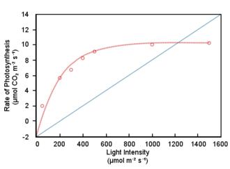 Non-photochemical quenching - Carbon assimilation (red line) tends to saturate at high light intensities, while light absorption (blue line) increases linearly