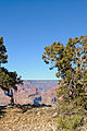 Pima Point, Grand Canyon (6633030549).jpg