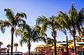 Pine Island Beach, Hernando County, Florida - panoramio (3).jpg