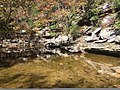Piney Creek Ravine Nature Preserve photo.jpg