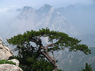Wang Wei (Tang dynasty) - A modern picture from Mount Hua, in the Qinling Mountain Range, perhaps suggesting some of the area's wild and rugged features which still exist today, and that would have also been enjoyed by Wang Wei and his friends.