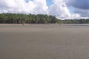 Playa Llorona