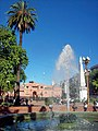 Plaza de Mayo Casa Rosada fuentes pirámide palmera.jpg