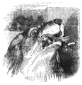 Podróże Gulliwera tom I page0274.png