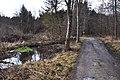 Poertschach Leonstainer Waldweg am Muehlbach 06012012 504.jpg