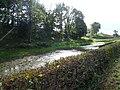Pond near Bryn-y-cil - geograph.org.uk - 587016.jpg