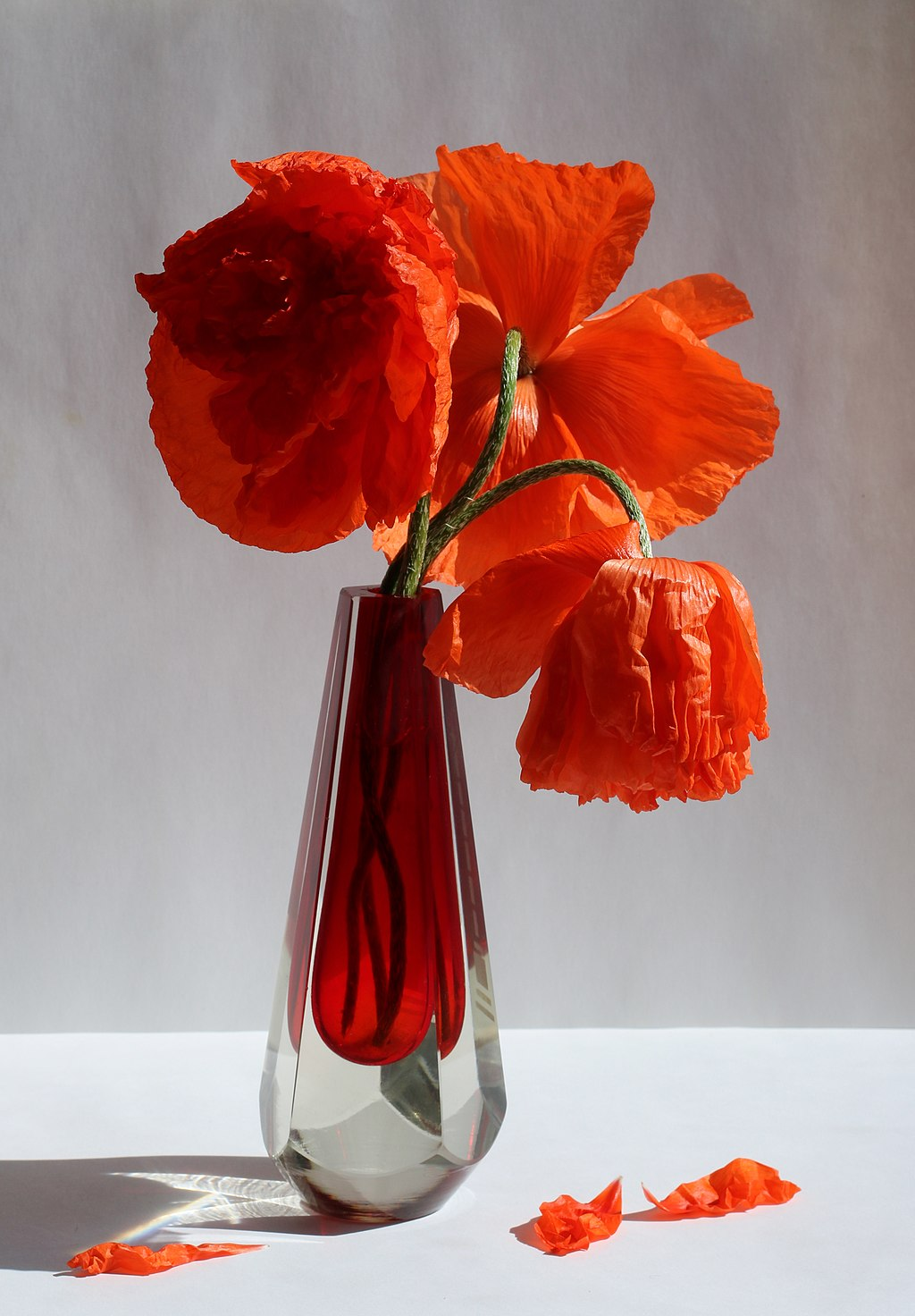 Poppies bouquet 2017 G1.jpg