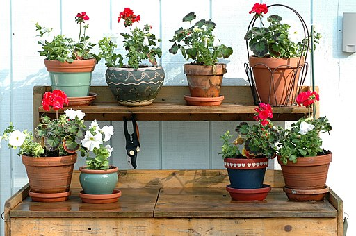 Potting-bench-red-and-white