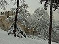 Praha, Smíchov, Kinského zahrada, sníh a zeď.JPG