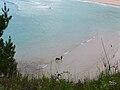 Praia de San Xurxo, Ferrol.jpg