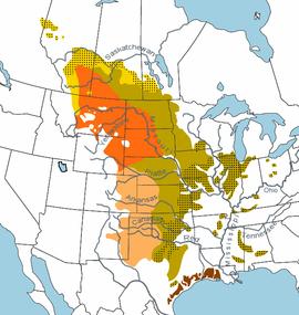 Interaktive Karte Prärie in Nordamerika