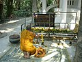 Praying monk Wat Kham Chanot.JPG