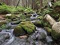 Pri potoku - panoramio (1).jpg