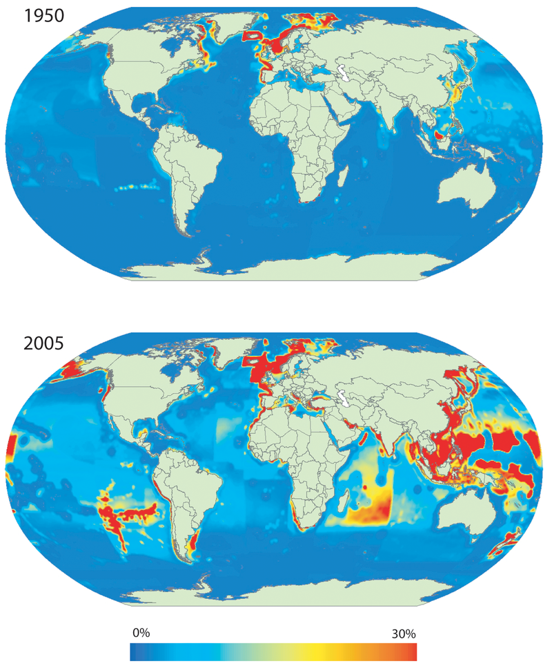 Primary production required (PPR) to sustain global marine fisheries landings expressed as percentage of local primary production (PP).Estimates of PPR, PP and PPR/PP computed per 0.5deg latitude/longitude ocean cells. PPR estimates based on the [www.seaaroundus.org Sea Around Us] catch database and PP estimates derived from SeaWiFS's global ocean colour satellite data. The maps represent total annual landings for 1950 (top) and 2005 (bottom). Note that PP estimates are static and derived from the synoptic observation for 1998. Primary production to sustain global marine fisheries.png