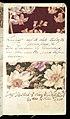 Printer's Sample Book, No. 19 Wood Colors Nov. 1882, 1882 (CH 18575281-49).jpg