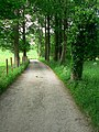 Private road to Bradford Amateur Rowing Club - geograph.org.uk - 1340055.jpg