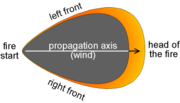 """Propagation of the fire with a characteristic shape of a """"pear"""""""