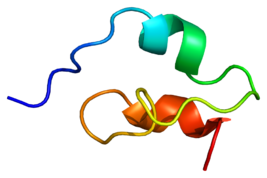Protein NOTCH1 PDB 1pb5.png