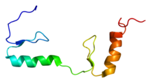 Protein ZFP64 PDB 1x5w.png