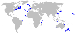 Range of the false catshark