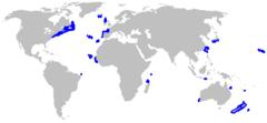Range of the false catshark