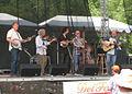 Psychograss Delfest 2011.jpg