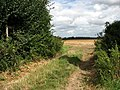 Public Footpath near Honing Row - geograph.org.uk - 526466.jpg