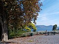 Public garden with view on the lake, in Bracciano.jpg