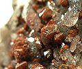 Quartz-Scheelite-mun05-128b.jpg