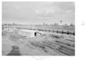 Queensland State Archives 4792 Goodna Mental Hospital Farm Block 1953.png