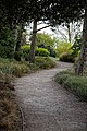 RHS Garden Hyde Hall, Essex, England - garden path 01.jpg