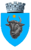 Coat of arms of Sighetu Marmației