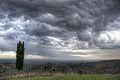 Rain Coming In - Montericco, Albinea, Reggio Emilia, Italy - November 6, 2012 05.jpg