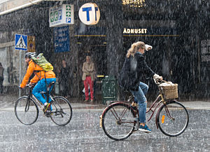 Rain showers in Stockholm 2015.jpg