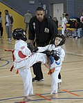 Ramstein holds youth martial arts tournament 150228-F-EN010-229.jpg