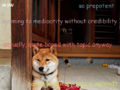 Random-wikipedia-inspired-doge-based-on-user-talkpage-discussion.png