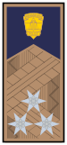 Rank Police Hungary COL.svg