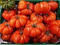 Rebellion tomatoes 2017 B.jpg