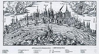 Rheinpanorama-Hans-Rudolf-Manuel-Deutsch-1548.jpg