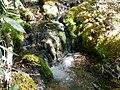 Richtis gorge stream - panoramio.jpg