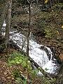 Ricketts Glen State Park Mohican Falls 5.jpg